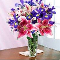 Always Spring + Free Vase - Canada