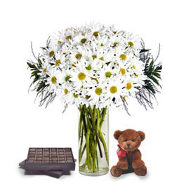 Daisies, Chocolates & Teddy