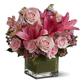 Special Lilies