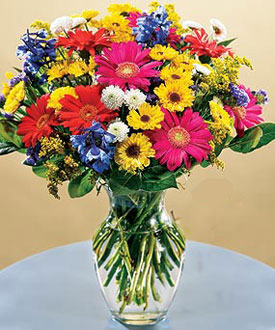Pop Canada Flowers
