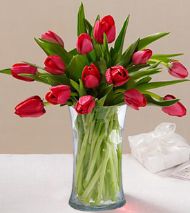 Red Tulips In Love