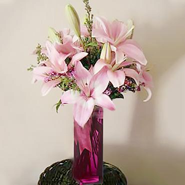 Sweet Lilies