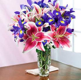 Always Spring + <b>Free Vase</b>