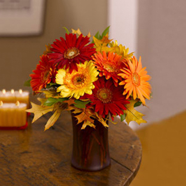 Seasonal Gerberas - Flowers to  Langley-British Columbia