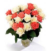 Canadian Premium Roses, Canada