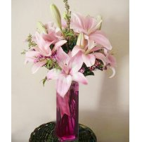 Sweet Lilies, Canada