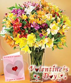 Colorful Valentine <b>FREE Card</b>