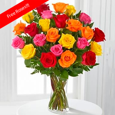 Rainbow Roses OFFER! - Moose Jaw