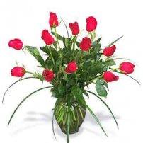 Passion Roses - Canada